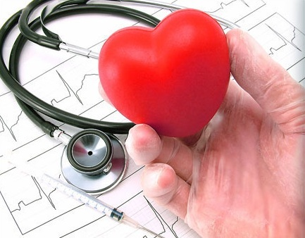 Сърцето – да пазим най-важния си мускул